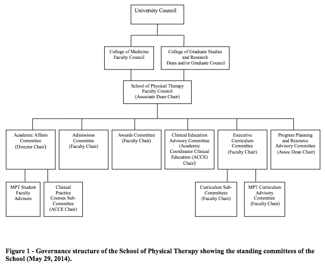 Governance structure of the School of Physical Therapy