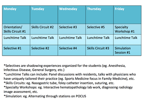Career Advising and Mentorship - College of Medicine